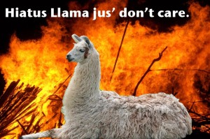 Hiatus Llama