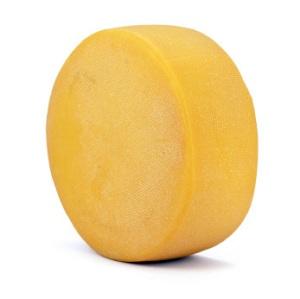 cheese_wheel